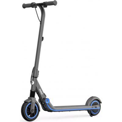 Электросамокат Ninebot eKickScooter Zing E10 черный